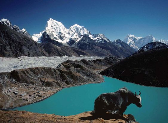 15 Days Everest Gokyo Lake Trek   everest gokyo trekking